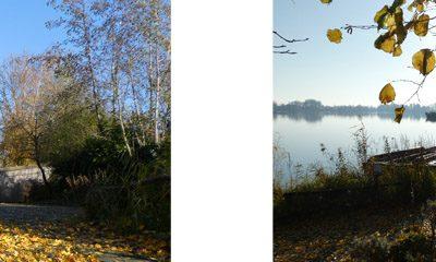Mooie herfstbeleving bij Watersnip groepsaccommodatie in Reeuwijkse plassen