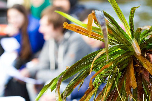 NME en watersnip educatie bieden de leukste buitenles voor het Voortgezet onderwijs